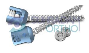 Pedical Screw - Polyaxial Screw